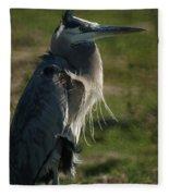 Wind Blown Great Blue Heron Fleece Blanket