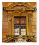 Window And Pediment In Ljubljana Slovenia Fleece Blanket