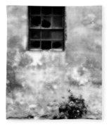 Window And Sidewalk Bw Fleece Blanket