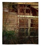 Window To The Past Fleece Blanket