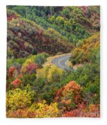Windy Road Through Autumn Forest Photograph By Gary Whitton