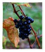 Wine In Time Fleece Blanket