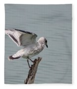 Wing Test Fleece Blanket