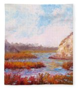 Winter At The Back Bay Fleece Blanket