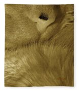 Winter Coat Fleece Blanket