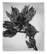Winter Dormant Rose Of Sharon - Bw Fleece Blanket