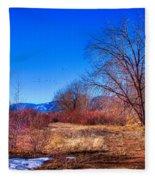 Winter In South Platte Park Fleece Blanket