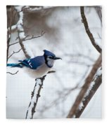 Winter Jay Fleece Blanket