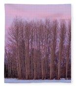 Winter Moon Fleece Blanket