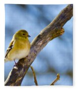 Winter Morning Song Bird Fleece Blanket