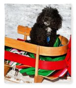 Winter Ride Fleece Blanket