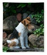Wirehair Fox Terrier Fleece Blanket