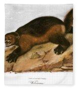 Wolverine Fleece Blanket