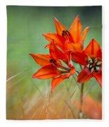 Wood Lily Fleece Blanket
