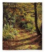 Woodland Path, Mount Stewart, Ards Fleece Blanket