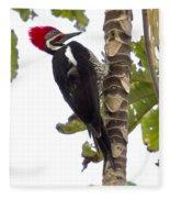 Woodpecker 1 Fleece Blanket