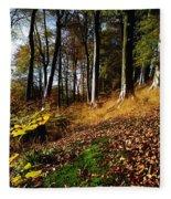 Woods During Autumn Fleece Blanket