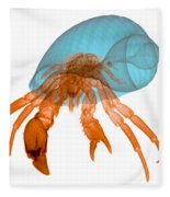 X-ray Of Hermit Crab Fleece Blanket