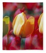 Yellow And Red Tulip Blooms Fleece Blanket