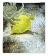 Yellow Angelfish Fleece Blanket