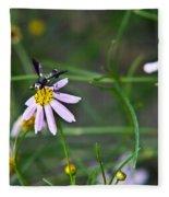 Yellow Banded Black Winged Fly 1 Fleece Blanket