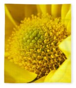 Yellow Chrysanthemum Fleece Blanket