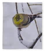 Yellow Finch Cold Snow Fleece Blanket