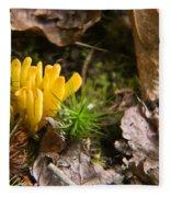 Yellow Fungus 1 Fleece Blanket