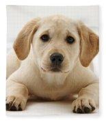 Yellow Lab Puppy Fleece Blanket