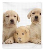 Yellow Labrador Retriever Pups Fleece Blanket