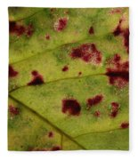 Yellow Leaf With Red Spots 2 Fleece Blanket