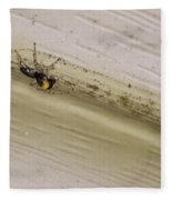 Yellow Palp Spider 1 Fleece Blanket