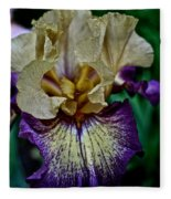 Yellow  Purple Iris Fleece Blanket