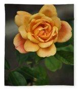 Yellow Rose Of Baden Fleece Blanket