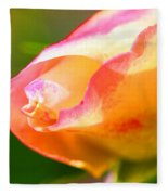 Yellow Rose Tipped In Pink Fleece Blanket