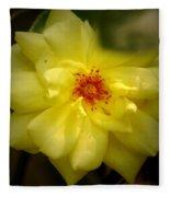 Yellowrose Fleece Blanket