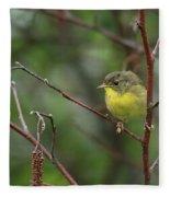Yellowthroated Warbler Fleece Blanket