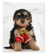Yorkipoo Pup Wearing Christmas Bells Fleece Blanket