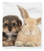 Yorkipoo Pup With Sandy Rabbit Fleece Blanket
