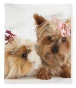 Yorkshire Terrier And Guinea Pig Fleece Blanket