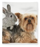 Yorkshire Terrier And Young Silver Fleece Blanket