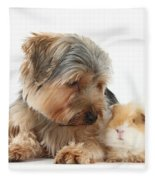 Yorkshire Terrier Dog And Guinea Pig Fleece Blanket