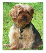 Yorkshire Terrier In Park Fleece Blanket