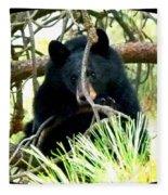Young Black Bear Fleece Blanket
