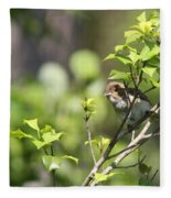 Young Blue Grosbeak Fleece Blanket