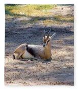 Young Ibex Fleece Blanket