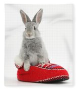 Young Silver Rabbit In A Knitted Slipper Fleece Blanket