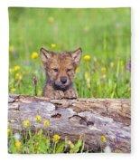Young Wolf Cub Peering Over Log Fleece Blanket