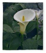 Zantedeshia Aethiopica African Flower Fleece Blanket