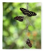 Zebra Butterflies Hanging Out Fleece Blanket